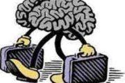 صادرات مجانی مغزها