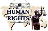 گزارش ویژه گزارشگر آزادی بیان و عقیده سازمان ملل متحد:وضع آزادی بیان در ترکیه وخیم است.