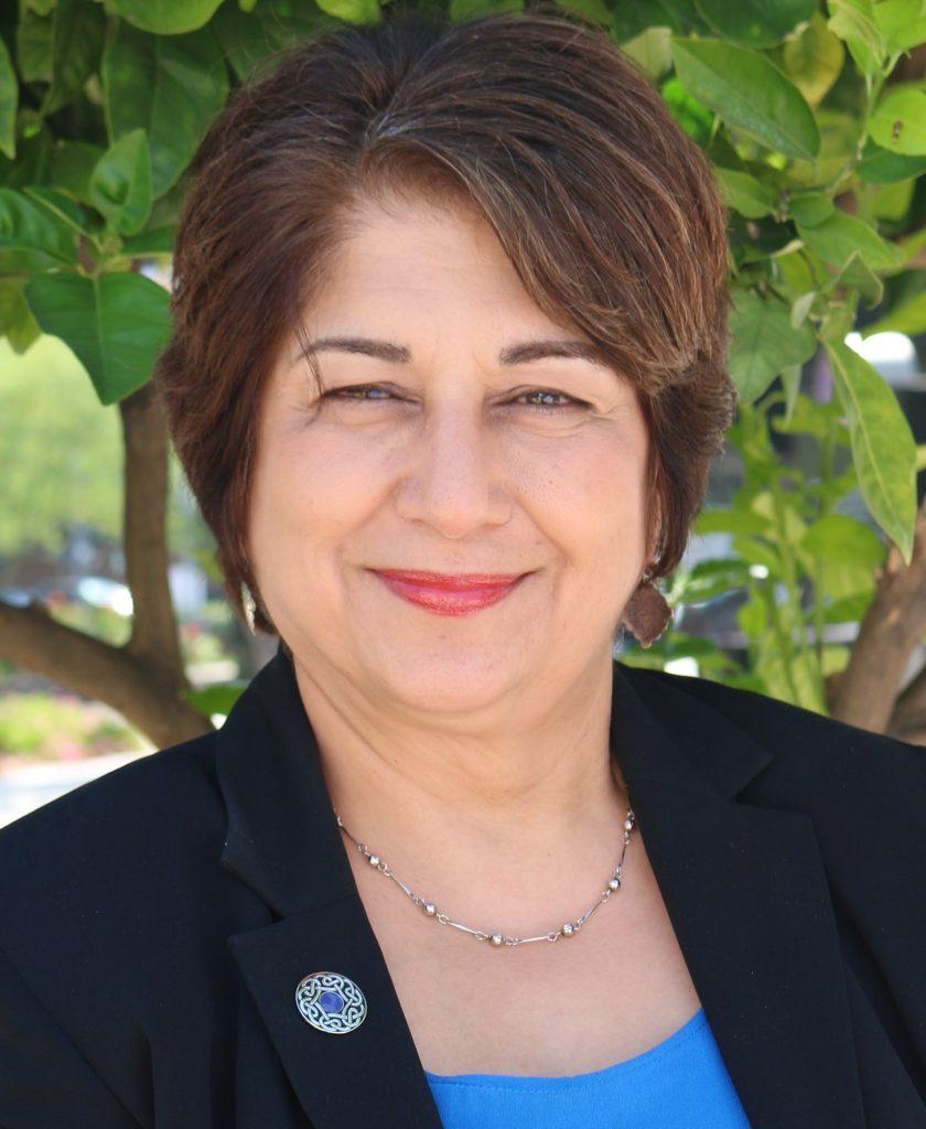 الهه امانی: ملاحظاتی درباره چالش های زنان و اقتصاد در ایران