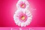 8 مارس روزجهانی زن گرامی باد!