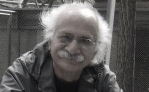 ناصر کاخساز: نقد نظریه پساسکولار
